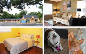 Taylor Recovery Pet Friendly Rehab
